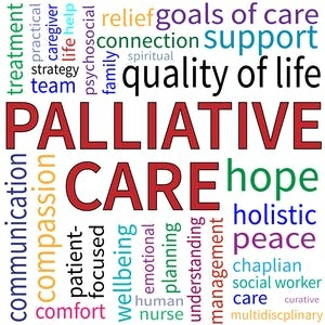 SF State Online Courses Palliative Care Always Capstone Course for San Francisco State University Students in San Francisco, CA