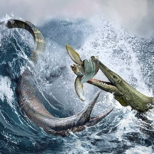 UCLA Online Courses Paleontology: Ancient Marine Reptiles for UCLA Students in Los Angeles, CA