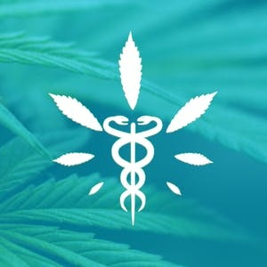 FSU Online Courses Medical Cannabis for Pain Control for Florida State University Students in Tallahassee, FL