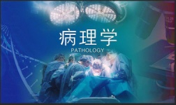 NYU Online Courses Pathology|病理学 for New York University Students in New York, NY