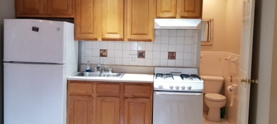 Housing Near NYU Small 1 bedroom apartment - NYC
